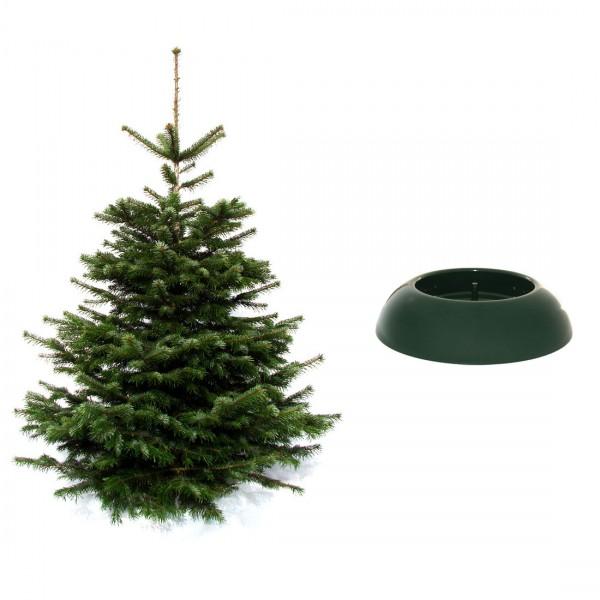 Weihnachtsbaum inkl. Easy Fix Classic Baumständer